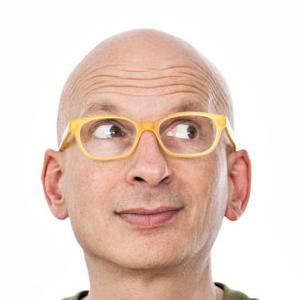 Seth Godin, Author