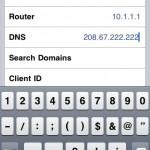 Step 4 - iPhone DNS Edit Setting